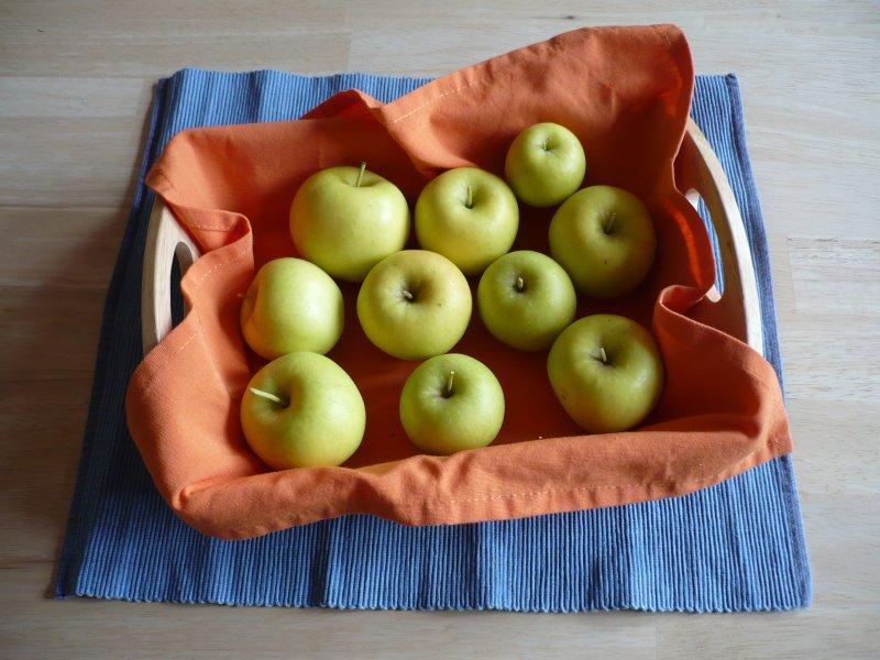 Erste Apfelernte